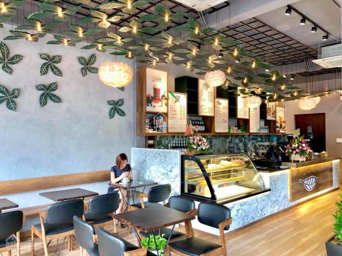 Bán gấp MT kinh doanh Phổ Quang - Tân Bình, DT 12x24m cạnh The Botanica, giá 43 tỷ. LH 0934078586