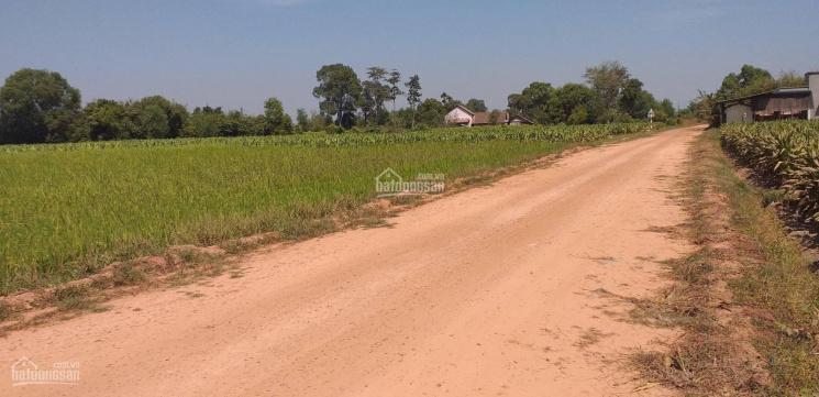 Đất khu dân cư đường 688, Trung Lập Thượng, Củ Chi, 2685m(40x65)