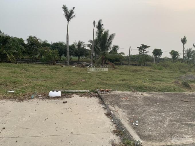 Bán 11,778.6m2 đất tại đường Huỳnh Thị Huề, Thái Mỹ, Củ Chi, TP.HCM ảnh 0