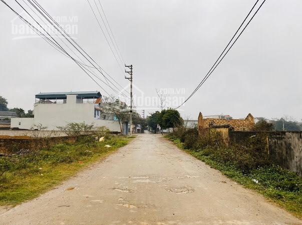 Gia đình cần bán 28 sào tại Xuân Sơn - SƠn tây phù hợp làm trang trại nghỉ dưỡng