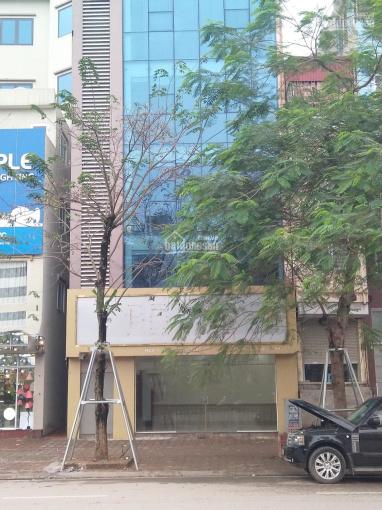 Cho thuê MBKD đẹp nhất phố Võ Chí Công, Tây Hồ - DT: 50m x 5 tầng, MT: 8m