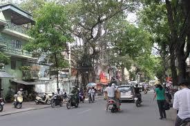 Cho thuê mặt bằng kinh doanh trên mặt phố Tuệ Tĩnh, DT 110m2x3T, MT 6m, 70tr/th, LH 0338998398
