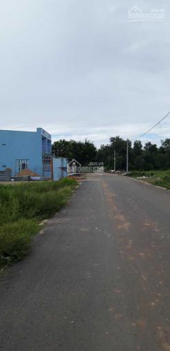 Bán đất 20x50m = 1000m2, thổ cư 300m2, mặt tiền nhựa Nguyễn Kim Cương vào đường 301 ảnh 0