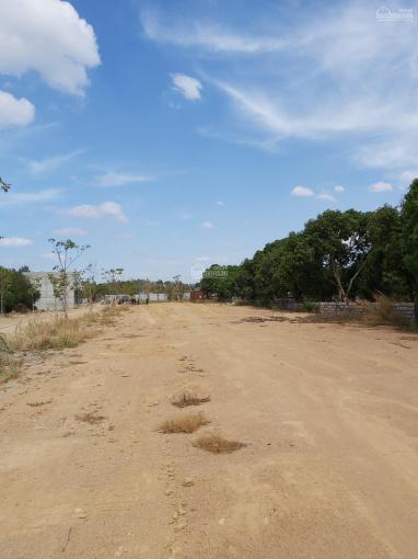 Bán đất đối diện trường cấp 2 Tóc Tiên, TX Phú Mỹ - BRVT