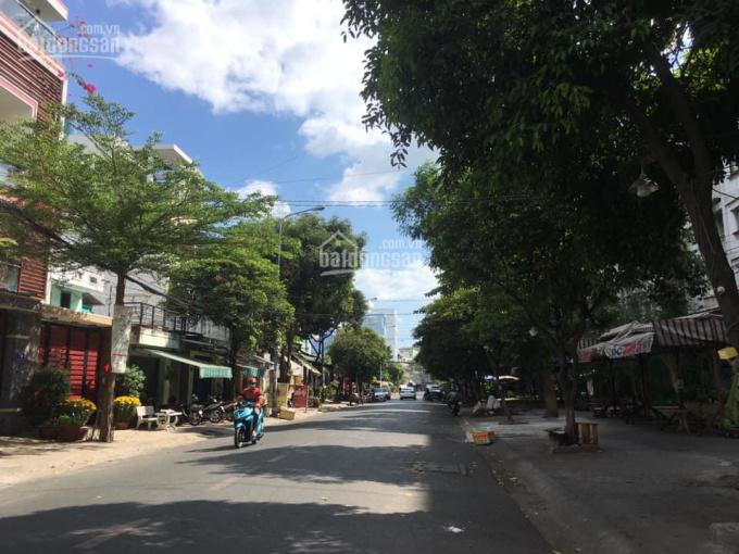 Chính chủ cần tiền bán gấp MTKD Võ Công Tồn, 5x30m - cấp 4 gần chợ Tân Hương giá 11,5 tỷ