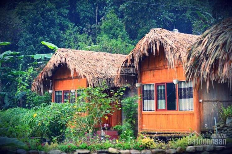 Sán Hồ Sapa - Lào Cai (BĐS nghỉ dưỡng)
