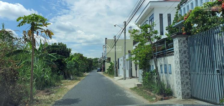 Bán đất mặt tiền Tạ Thị Phi 10m x 28m 2 mặt tiền ĐT 0945949909 ảnh 0