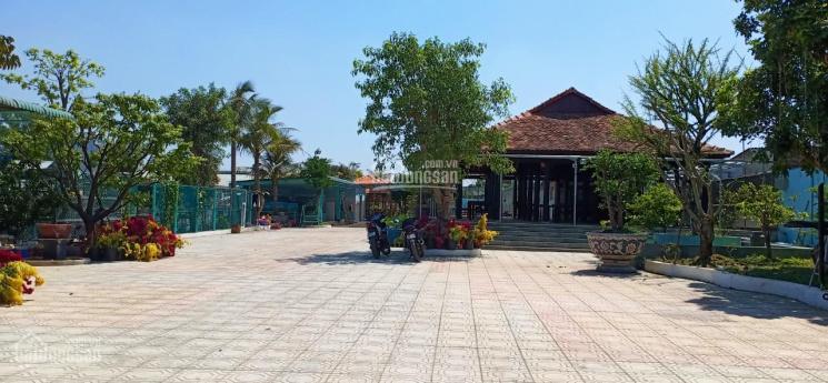 Bán đất tặng nhà mới xây mặt tiền gần chợ Búng, Thuận An, BD, DT 20x50m, 20 triệu/m2