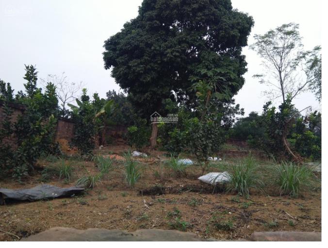 Bán đất Bình Yên, Thạch Thất, DT 1000m2, MT 20m, giá 3,3 triệu/m2. LH 0961.266.229
