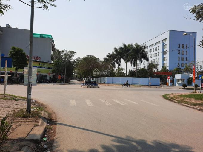Bán đất phân lô 60m2, MT 4.62m, Tứ Hiệp, Thanh Trì, không vướng gì, view vườn hoa. LH 0986239852 ảnh 0