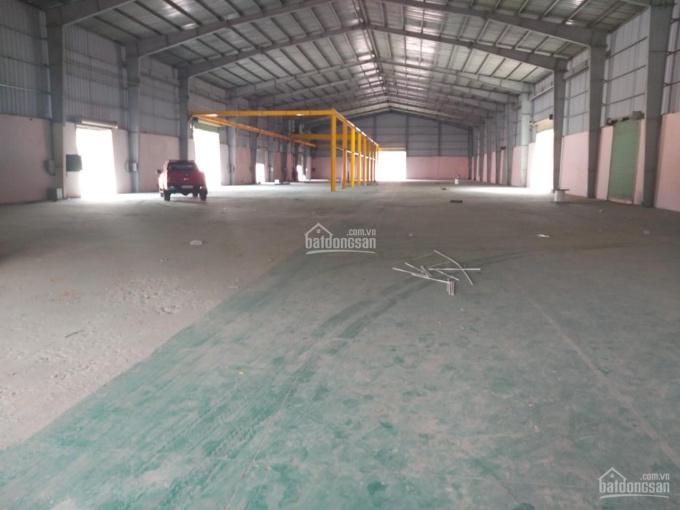 Cho thuê kho xưởng diện tích 3000m2 giá 80tr/tháng ở đường Hồ Văn Tắng, Tân Phú Trung, Củ Chi