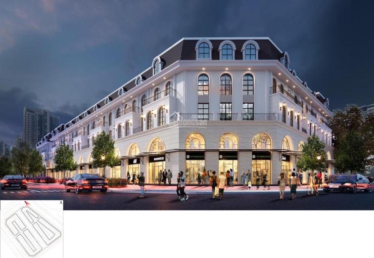 Mở bán shophouse - TMDV Hải Đăng đẹp nhất dự án Vinhomes Ocean Park cơ hội để đầu tư và kinh doanh