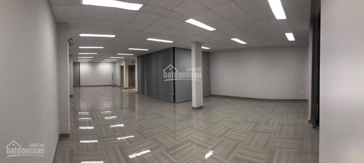 Cho thuê mặt tiền Sư Vạn Hạnh 6.2x25m, trệt 4 lầu, gần Vạn Hạnh Mall khu kinh doanh đa ngành nghề