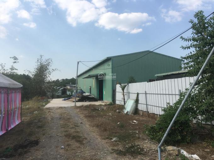 Chính chủ bán kho xưởng Phường Tam Phước Biên Hoà Đồng Nai. SĐT 0908111169