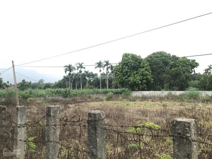 Cần bán lô đất 1800m2 mặt đường Liên Xã Nhuận Trạch giá 1,5 tỷ