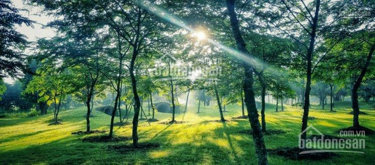 Chính chủ gửi cho thuê biệt thự song lập Ecopark giá tốt nhất. LH 0973097187