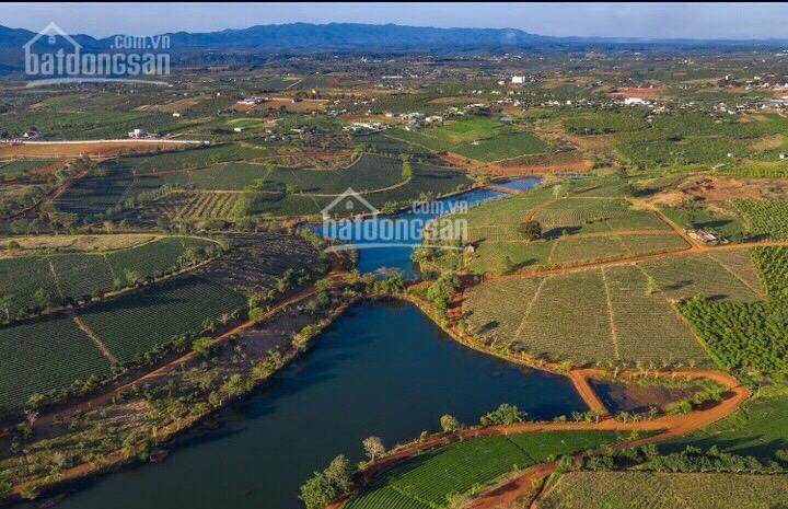 Đất nền sổ riêng rẻ nhất thành phố Bảo Lộc - 399 triệu/ nền - công chứng ngay