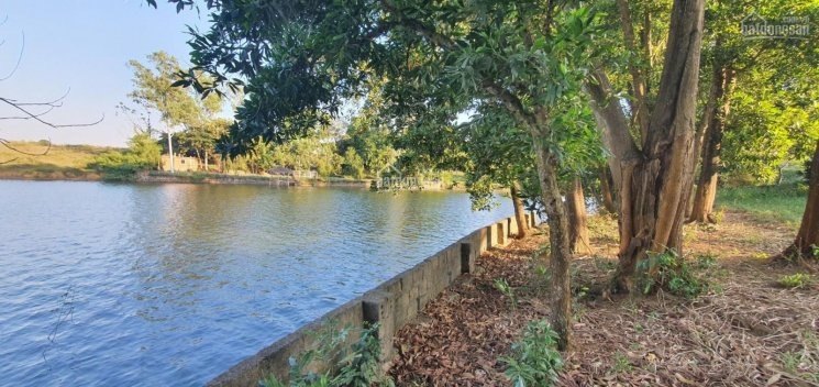 Cần bán 4766m2 bám mặt Hồ Đồng Chanh tuyệt đẹp tại Lương Sơn - Hoà Bình