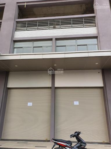 Cho thuê 2 căn Shophouse Novaland liền kề 8x15m có 1 lầu