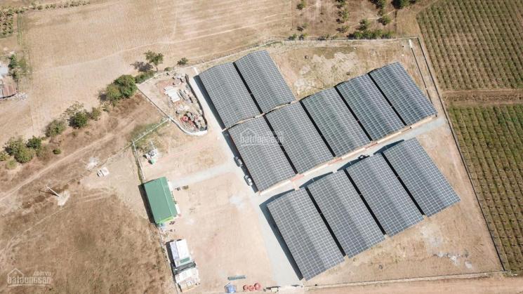 Bán Trang trại Nông Nghiêp công nghệ cao 4.0 tích hợp năng lượng mặt trời 2MW mặt tiền QL 27B