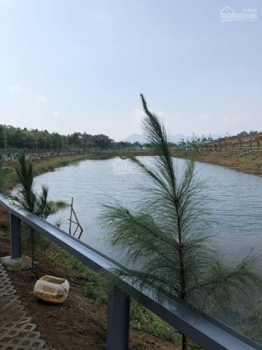 Đất view hồ, đồi chè mát rượi 2tr/m2 thổ cư sổ riêng ảnh 0