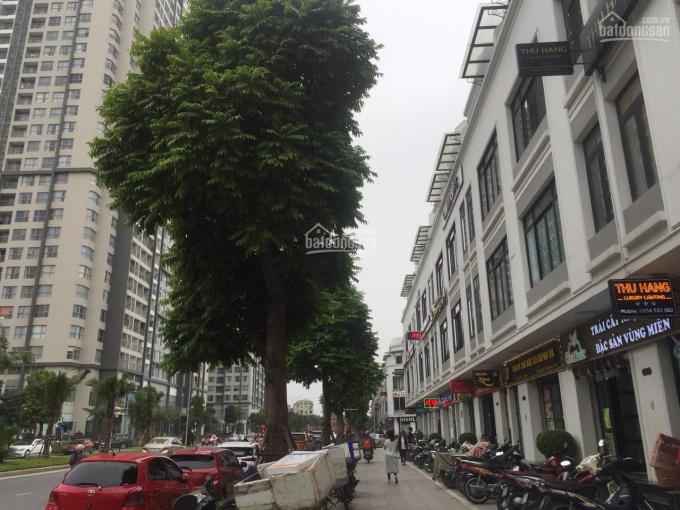 Cho thuê Shophouse Vinhome Gardenia Hàm Nghi 95m2 x 5T, mặt đường