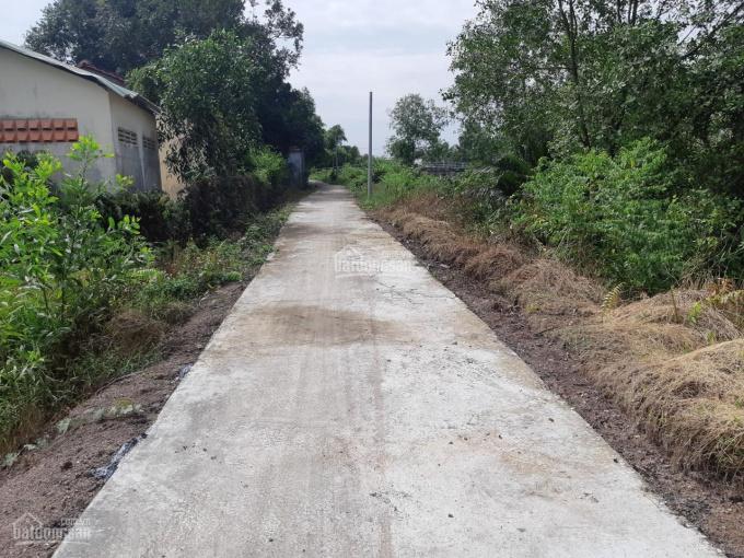 Bán đất mặt tiền đê kênh sáng lớn, xã Lương Bình, huyện Bến Lức, Long An, 0909535495 (Mr Thắng) ảnh 0