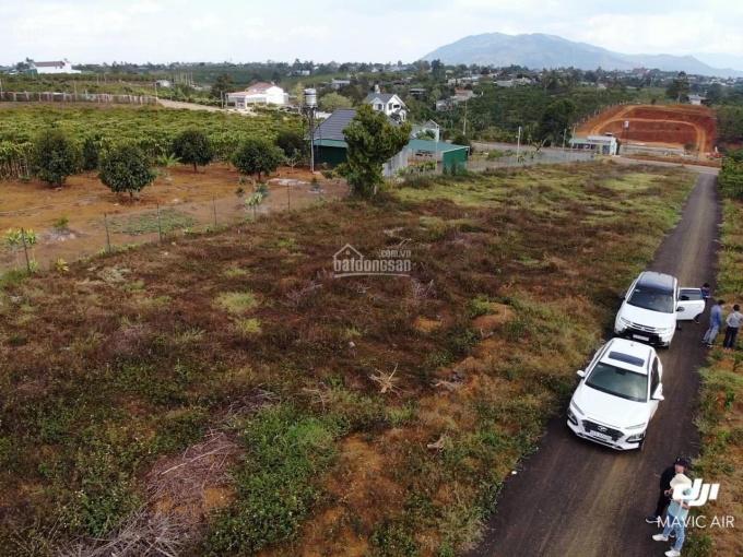 Gia đình đi Nhật định cư, bán nhanh 1 lô biệt thự 205m2 có sẵn 100m2 thổ cư, công chứng liền tay