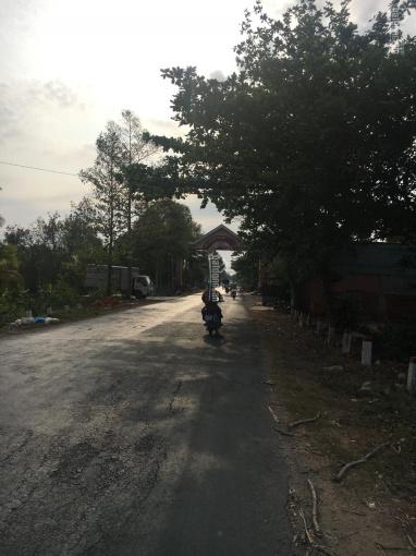 Bán đất mặt tiền TL884 xã Sơn Hoà, Châu Thành, TP Bến Tre