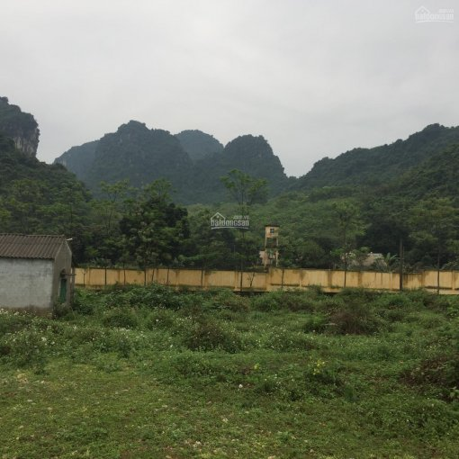 Cần bán lô đất 7000m2 đã có trường bao xung quanh giá đầu tư tại Liên Sơn, Lương Sơn, Hòa Bình