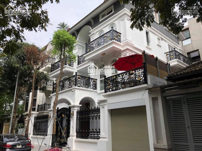 Cho thuê biệt thự nhà vườn khu Hoàng Đạo Thúy, dt 120m2, 4 tầng giá 45 tr/th, 0984250719 ảnh 0