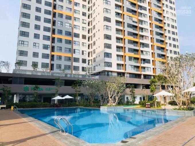 Bán căn hộ Mizuki Park 56m2 2PN nhận nhà ở ngay, giá 2tỷ270 đã VAT và PBT, LH 0934754038 ảnh 0