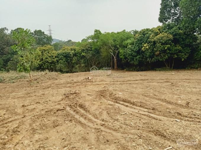 Cần bán nhanh lô đất 3700m2 đất làm nhà vườn nghỉ dưỡng giá rẻ tại Hòa Sơn, Lương Sơn, Hòa Bình