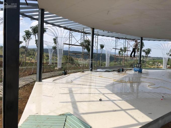 Đất view hồ đồi thông nghỉ dưỡng Bảo Lộc 156 triệu/100m2 sổ hồng sẵn. LH: 0931232361
