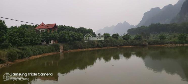 Cần chuyển nhượng gấp 13ha đất thổ cư và nhà đất vườn đẹp nhất nhì Lương Sơn, HB