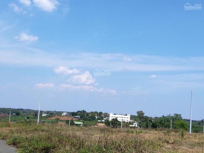 Đất biệt thự trung tâm, đầy đủ tiện ích, 1tr100/m2, sổ sẵn đang lên thổ cư, xây dựng tự do