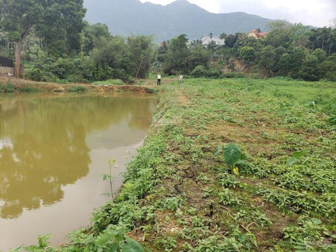 Mảnh 2138m2 view hồ siêu thơ mộng tại xã Tiến Xuân, tặng cả vườn bưởi thu hoạch hàng năm chỉ 3 tỷ