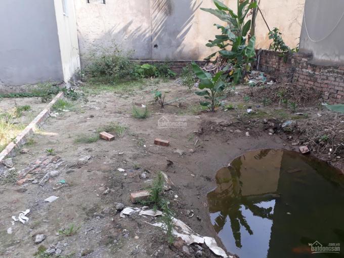 Cần bán gấp lô đất 52m2 tại Cổ Bi, Gia Lâm, giá chỉ 23tr/m.