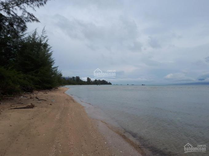 Chính chủ bán đất Bãi Thơm rộng 1,5ha có 400m2 mặt biển ảnh 0