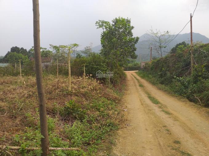 Chính chủ bán đất thổ cư xã Yên Bài - Ba Vì, làm nhà vườn 1.2 tr/m2