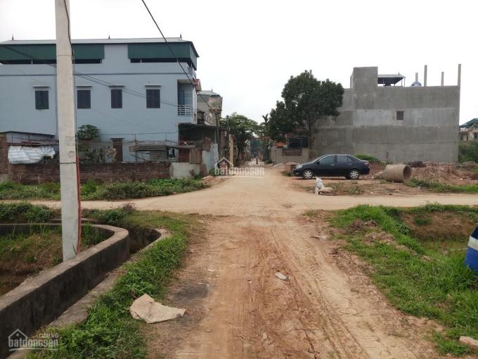 Bán đất giãn dân huyện Thạch Thất, DT 93m2, vị trí cực đẹp. LH Mr Hùng 0888492148 ảnh 0