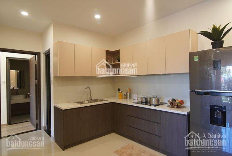 Biểu tượng mới của TP Quy Nhơn, căn hộ smarthome giá chỉ từ 35tr/m2, CK 2 - 18%. LH 0902 401 928 ảnh 0