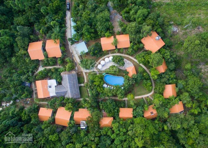 Bán 2000m2 hẻm phố du lịch Trần Hưng Đạo, làm resort cực đẹp, giá shock chỉ 12tr/m2 ảnh 0