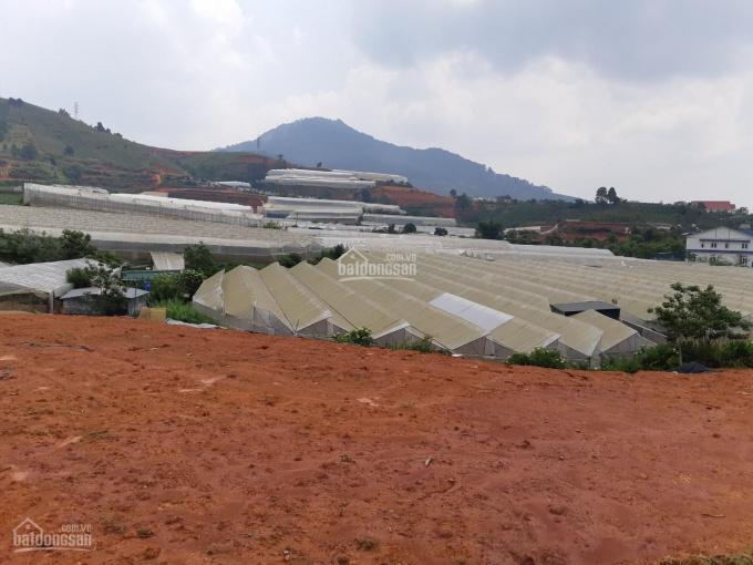 Đất nền Lạc Dương hot nhất Lâm Đồng, 1500m2 cực rẻ