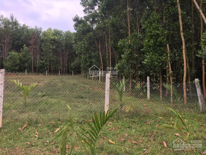 Bán 1024m2 đất vườn Đông Lâm, Hòa Phú, Hòa Vang, Đà Nẵng có 400m2 đất ở: 0973343779