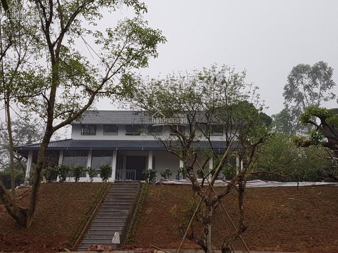 Nhượng lại homestay mặt hồ 3000m2 tại Hòa Sơn, Lương Sơn, giá 8,9 tỷ