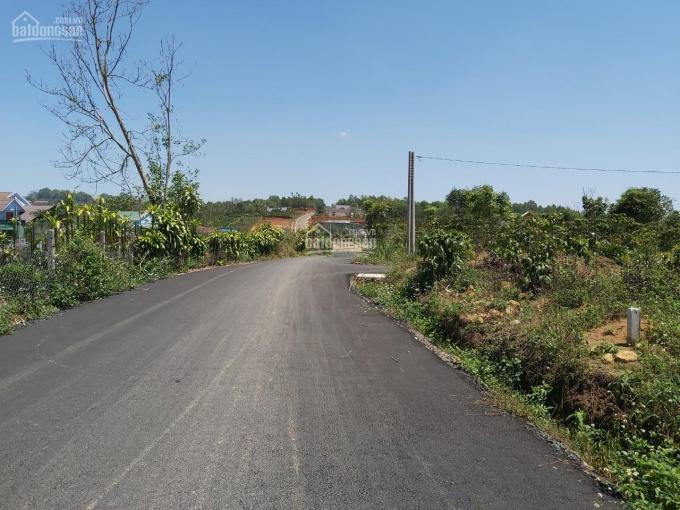 Chính chủ bán đất đẹp Đinh Công Tráng, Bảo Lộc DT 14x30m, có 196m2 thổ. Giá rẻ 1,7 tỷ