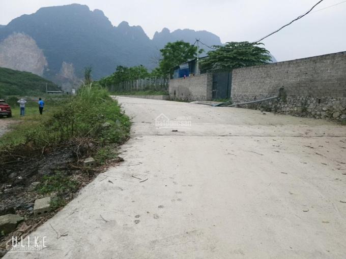 Chính chủ cần bán 8500m2 có sẵn nhà ở, hai ao cá view cao thoáng tại Lương Sơn giá hơn 2 tỷ