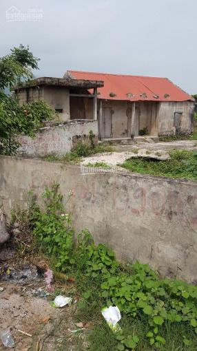 Ngân hàng phát mại lô đất 772m2 2 mặt tiền, tặng nhà tại Quảng Trạch, Quảng Bình ảnh 0