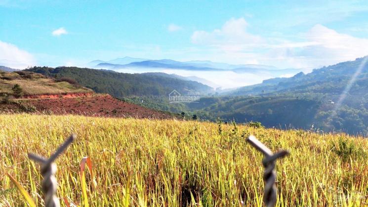 Cần tiền bán gấp đất mặt tiền Đà Lạt, đất XD 100% ngắm mây tại nhà. QH Dân Cư của TP